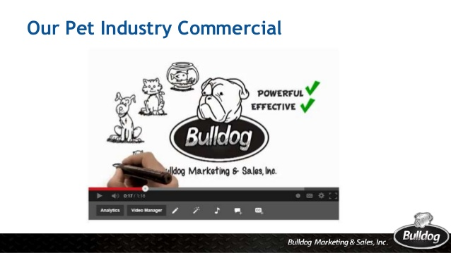 bulldog-strategic-consulting-2017-fnl-14-638